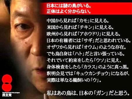 鳩山由紀夫「日本には謎の鳥がいる。正体はよく分からない」
