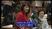 2010年3月8日、子ども手当の問題点を厳しく追及する丸川珠代議員